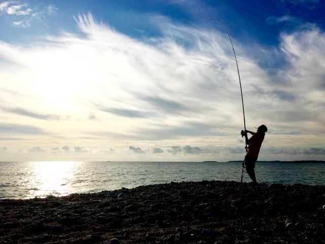 アキアジ釣り リール