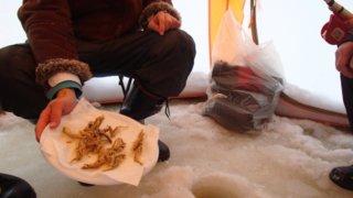 東北地方のワカサギ釣り場とその近郊おすすめ宿