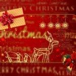 クリスマス|社会人の彼女が喜ぶプレゼントとは!?